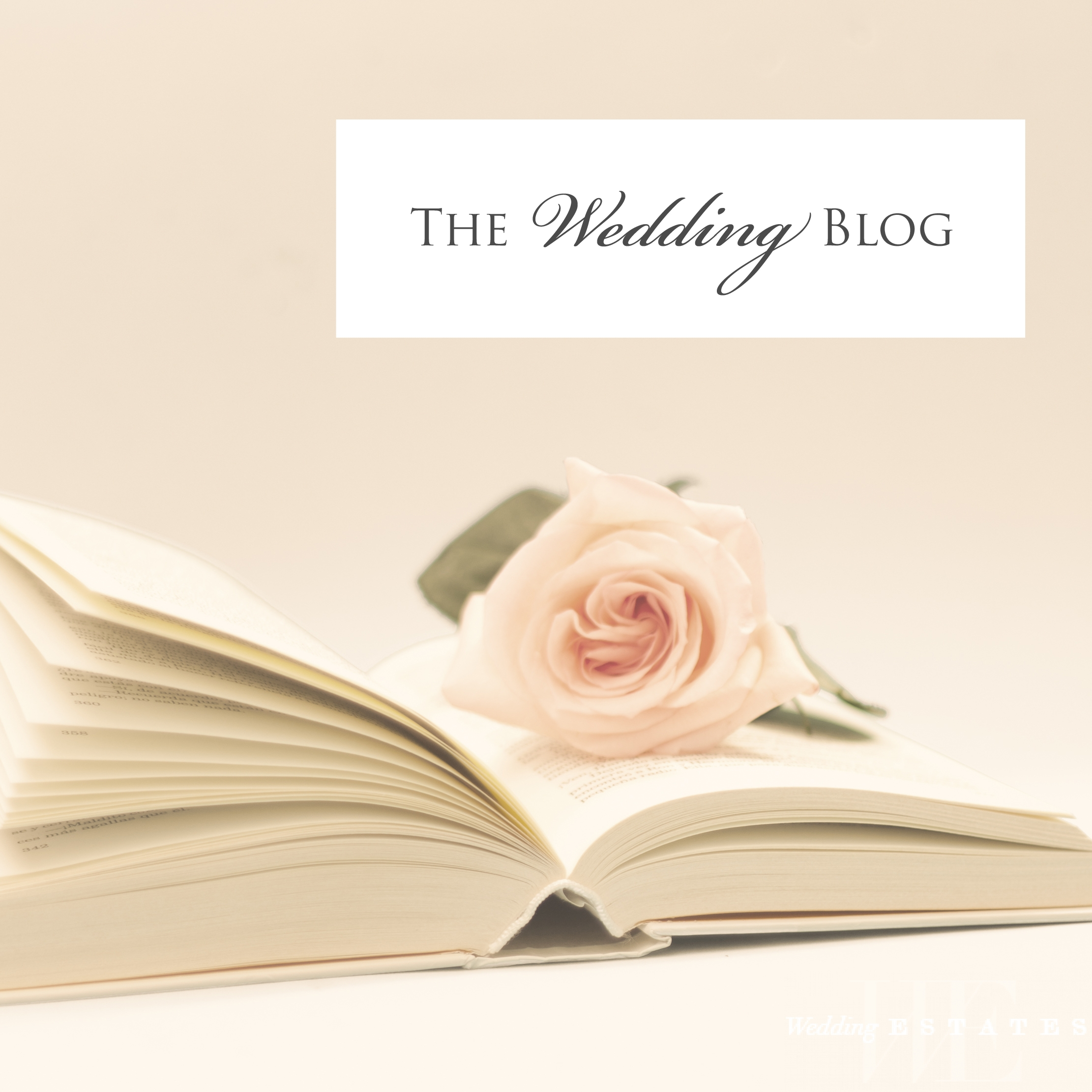 Best wedding blogs for inspiration wedding estates best wedding blogs for inspiration junglespirit Image collections